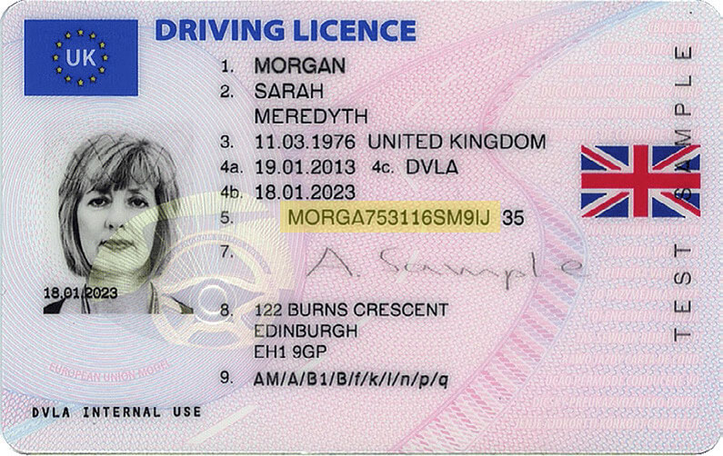 licence example new